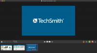 TechSmith Snagit 3.3.4 - Screen capture utility