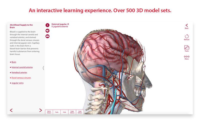 Anatomy & Physiology 3.0.17 download | Mac OS