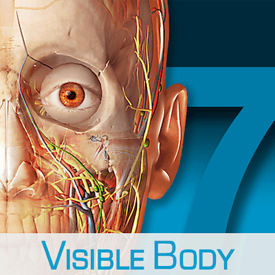 Human Anatomy Atlas – 3D Anatomical Model of the Human Body 7.4.01