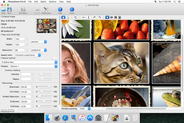 PhotoZoom Pro 6.0.8