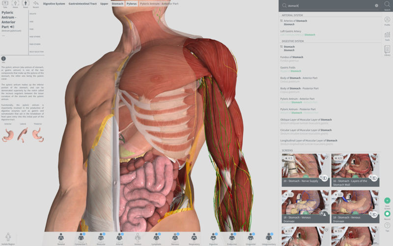 Complete Anatomy 2018 Courses 340 Download Macos