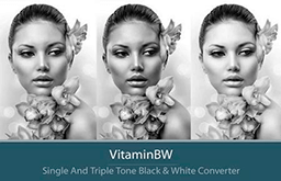 VitaminBW 2.0.2 for Adobe Photoshop