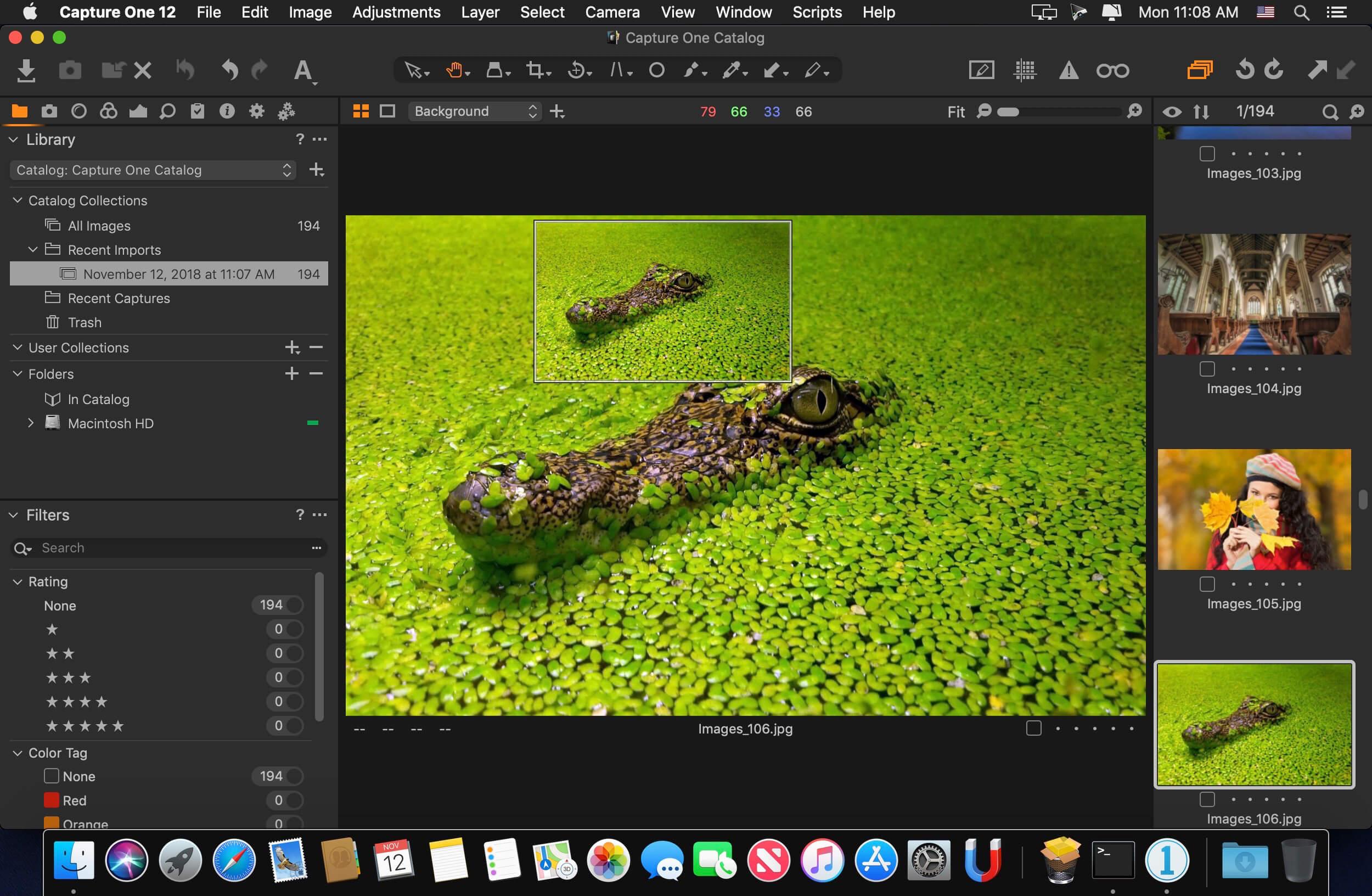 Capture One Pro 12 1 0 150 download | macOS