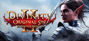 Divinity: Original Sin 2 - Definitive Edition (2019)