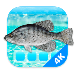 Aquarium 4K - Live Wallpaper 1.0.4